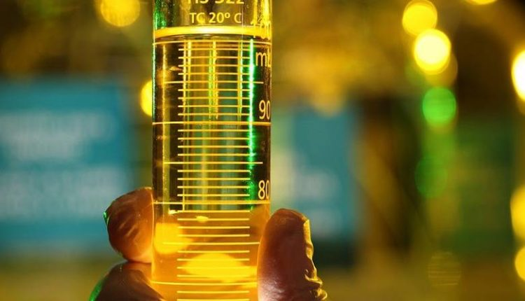 dia internacional do biodiesel